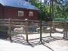 aspudden-djurparken-003